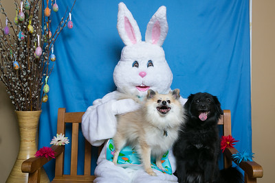 BVH-Easter_0012