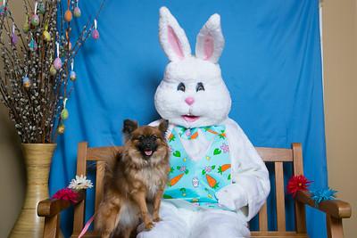 BVH-Easter_0013