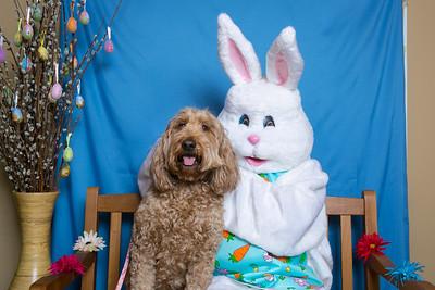 BVH-Easter_0016
