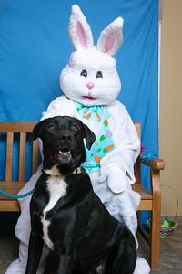BVH-Easter_0015