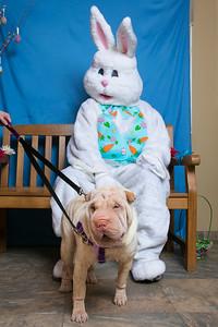 BVH-Easter_0009
