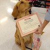 You sure I graduated from puppy school?