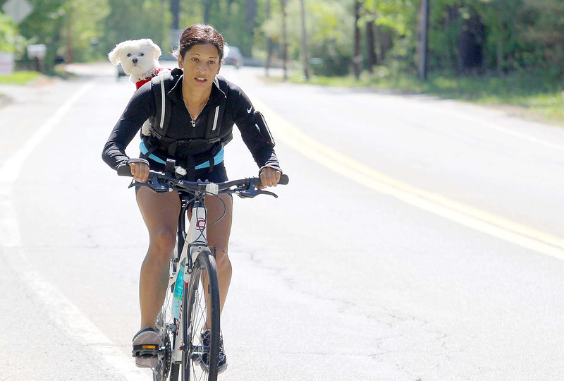 Rishi Kamdar of Leominster was out biking with her four year old Maltipoo Layla on 2A in Lunenburg on Wednesay morning. SENTINEL & ENTERPRISE/JOHN LOVE