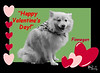 FINNEGAN Valentines 4x6 copy