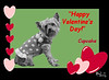 CUPCAKE  Valentines 4x6