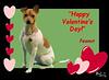 PEANUT  Valentines 4x6