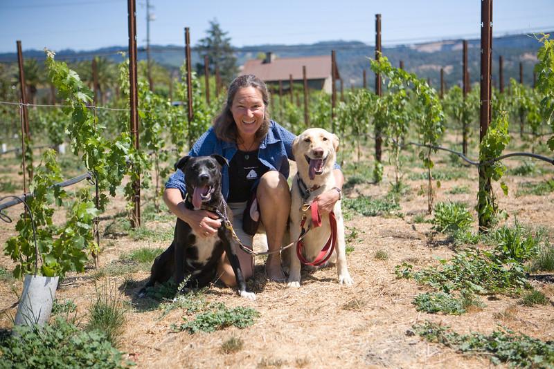 canine+wines_14