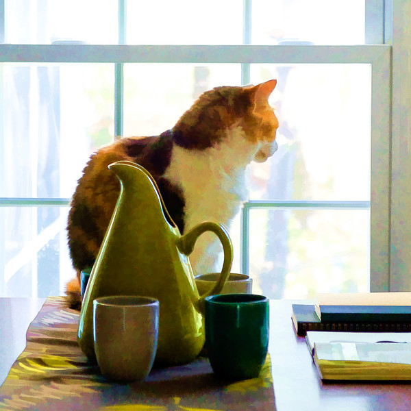 Calico cat looking through window edited with Topaz Labs plugin.