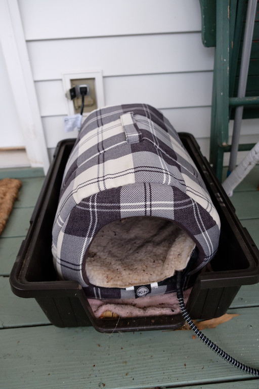 Keeping a feral cat warm in the winter.