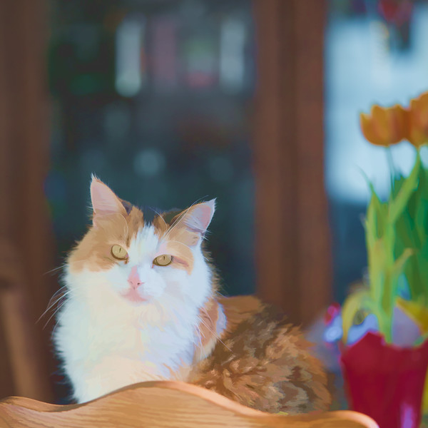 Calico cat using Topaz Labs