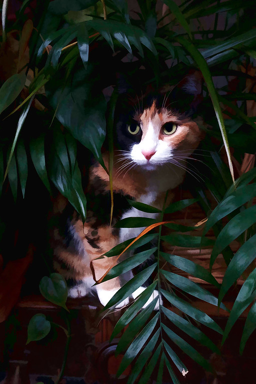 Calico cat peaking out from houseplants edited with Topaz Labs Plugin.