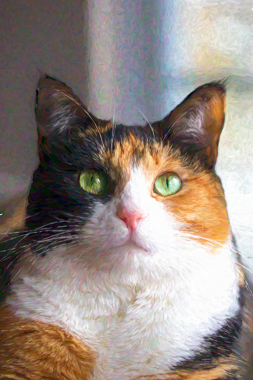 Calico cat photo edited to look like a painting.
