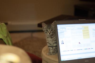 What? I'm helpful.