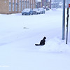 Sitting on the street in the snowfall