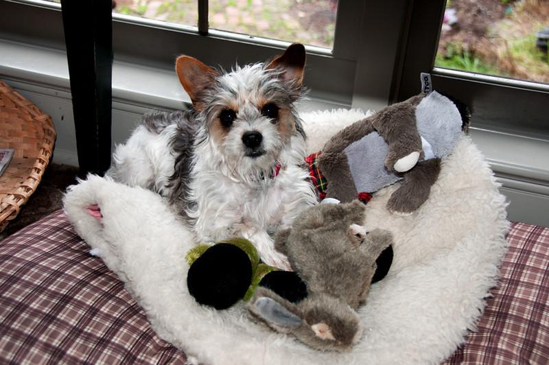 She loves her toys.