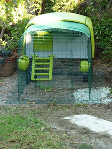 The Eglu Cube, assembled. The cube I bought has a 6' run  but you can buy 3' extensions for it as well. I plan to let the hens free range in the yard so I got the smaller run for now.