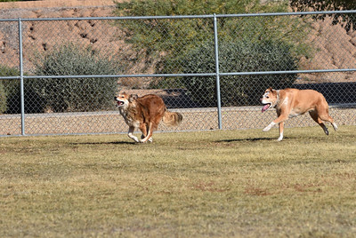 Claire & Mia at the the Dog Park