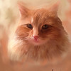 Painting of female cat, Tessie.  Painting and original photograph by Lucky Dog Pet Photography.