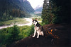 Clea at White River Campground at Mt Rainier