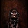 Randell-John-Pets-Wales-May-12