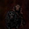 Doug and Bronnie-1adj