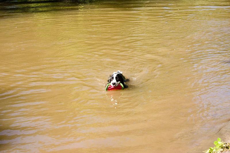 2005_6_21_Swimming_029