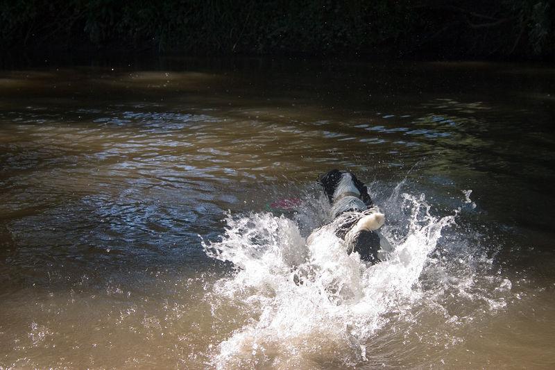 2005_6_21_Swimming_044