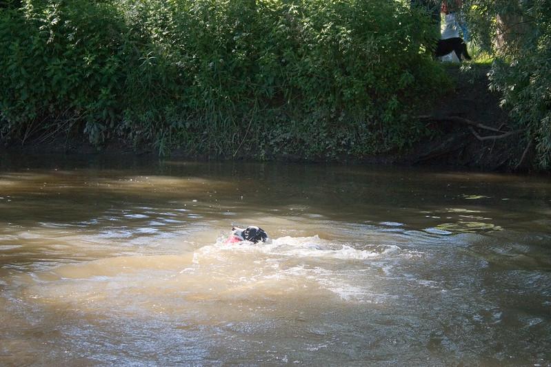 2005_6_21_Swimming_047