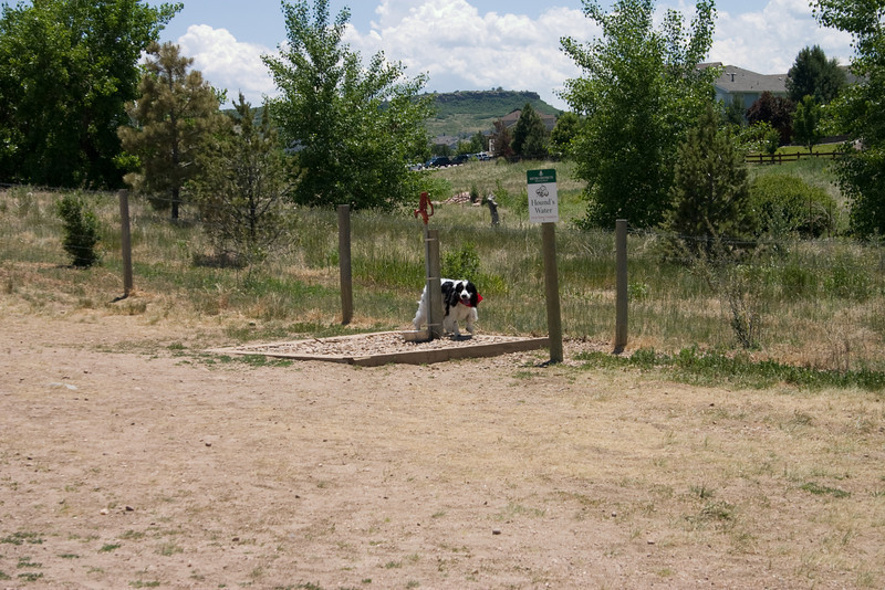 2008-6-21 Hound Hill Park-9