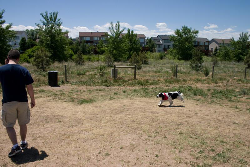 2008-6-21 Hound Hill Park-8