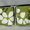 "Blossom Olive 1 1/2"" wide martingale collar"