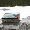 Domo at Reflection Lake Mt Rainer 29May16