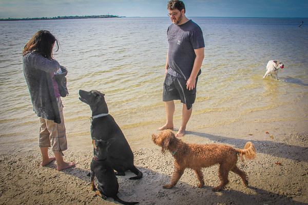 Dog Beach, Green Key Beach, New Port Richey FL 1 9 2016