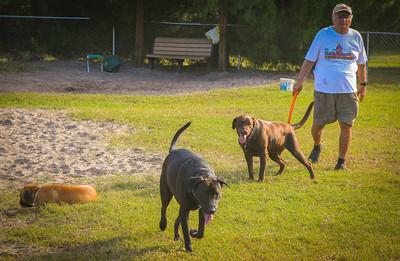 DogPark11.13-3422