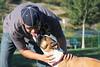 Dog Park 064