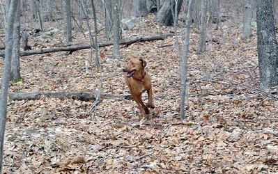 Ruby Running