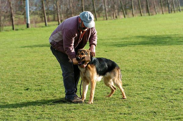 Dog training 10MAR07