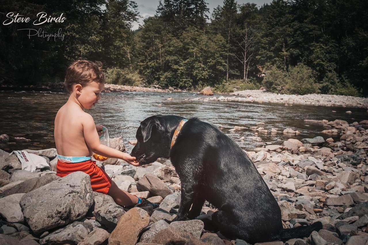 IMAGE: https://photos.smugmug.com/Pets/Dogs-2020/i-8S4CFph/0/b9fe5fcf/X2/JTR04422-PsEdit-X2.jpg
