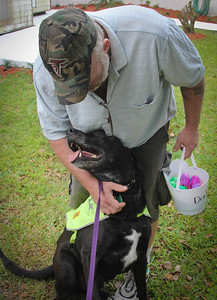 DrLight Therapy Dog,  Loves Veterans,  Easter Egg Hunt,, Gulfside Hospice, New Port Richey