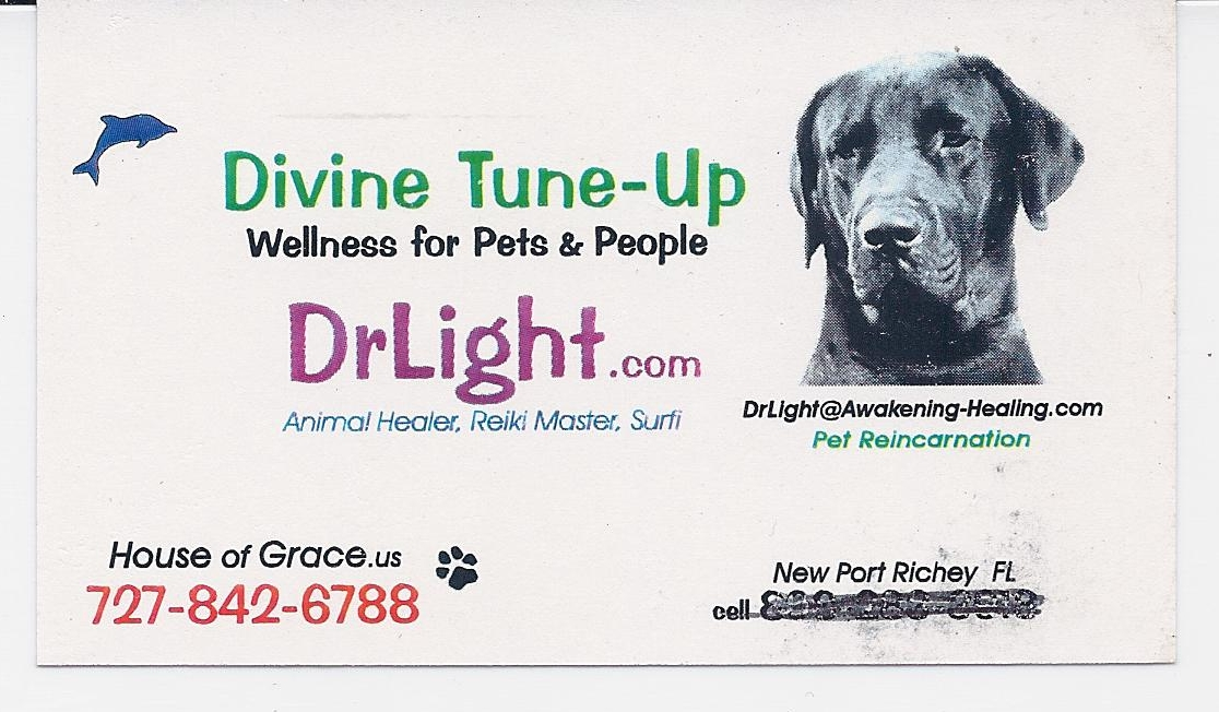 DrLight; Business Card;  DrLight.com Web Site,  House of Grace,  103116 In the Service of the Divine and the Holy Family