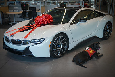 DrLight & new BMW  i-8, Hybrid Sport Car, Ferman BMW,  04618, 12 14 2016,