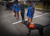 DrLight & Friends, 5K Walk for Gulfside Hospice, Rasmussen College, FL, DSC03265