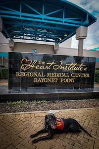 DrLight visits Bayonet Point Medical Center,  04012,  11 29  2016,