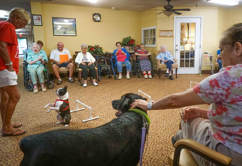 Pets Add Life, Therapy Dogs, Brookdale NPR Assisted Living visits,    8 13 2018