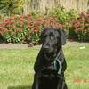 Mia, 10/2005.