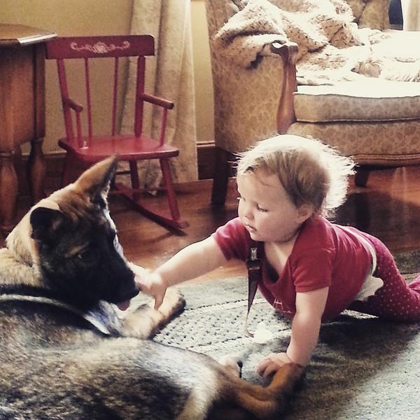 Egon vom G, aka Lodi, has a fine opinion about babysitting :)