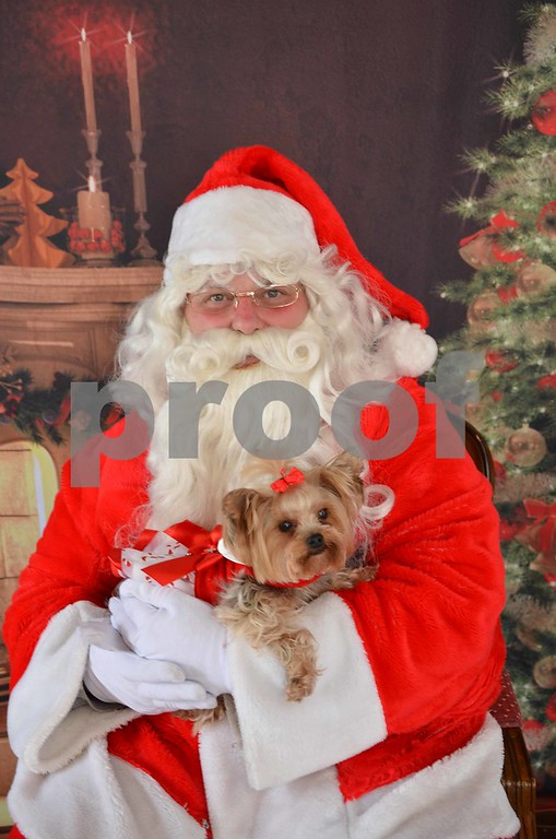 Elli Sophia's 2017 Christmas Pics with my Mommy