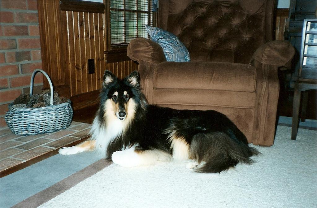 The Beauty Duchess - Fall '92