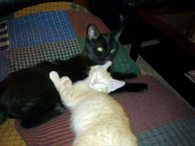 Sammy & Stanley