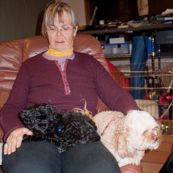 Fia and Padraig share Jan's lap